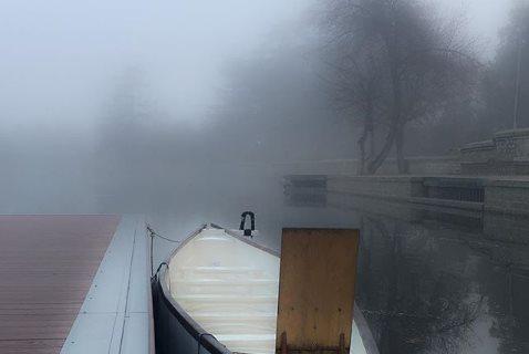 Dragones en la niebla